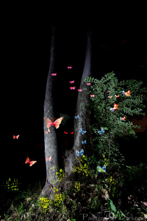 El Bosque de las Mariposas